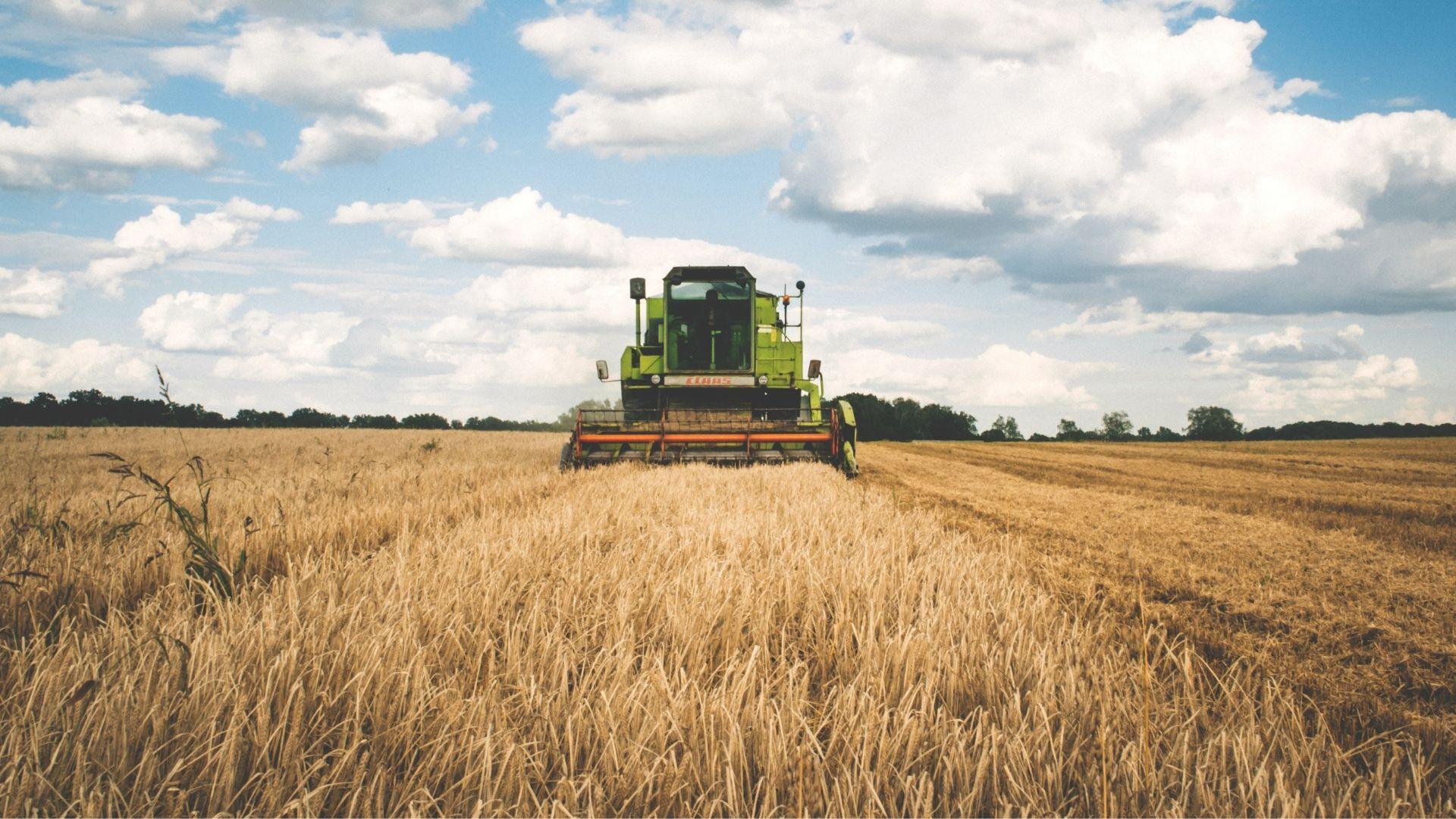 Investiții în exploatații agricole